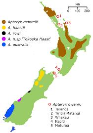 New Zealand Map New Zealand Map And New Zealand Satellite Image