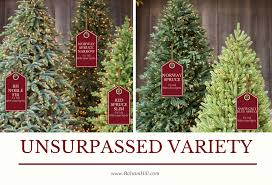 my balsam hill home stunning artificial christmas trees for your