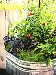 Container Vegetable Gardening Ideas Container Vegetable Gardening Beginners Small Veggie Garden Ideas