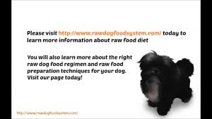 pros and cons of the frozen raw dog food diet youtube