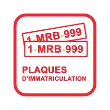 Bineuse Electrique Carrefour by Mr Bricolage