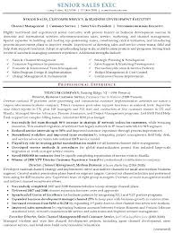 Sales And Marketing Resume Sample Resume For Experienced Sales And Marketing Professional