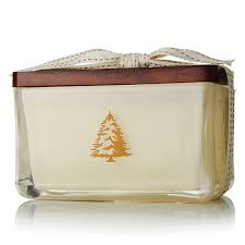 thymes candles thymes frasier fir 2 wick candle at candledelirium
