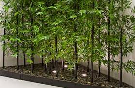 artificial bamboo plants trees guide artificial plants unlimited
