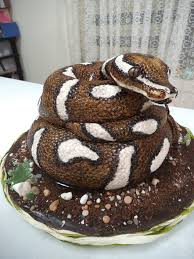 creative cakes barossa creative cakes in nuriootpa sa cake shop truelocal