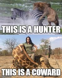 Hunting Meme - hunting lion memes lion best of the funny meme