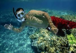jeep snorkel underwater snorkeling shore excursions