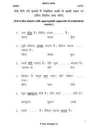 ideas of adjectives in hindi worksheets for your download