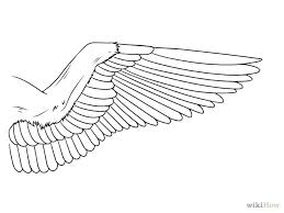 wings drawing free download clip art free clip art