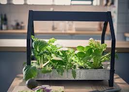 indoor hydroponic garden indoor garden hydroponic grow systems