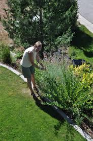 gardening from u0027empty slate u0027 painted hills home u0027s landscape