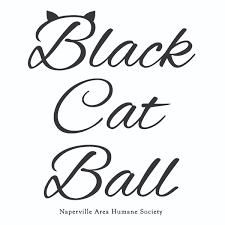 humane society black friday black cat ball logo