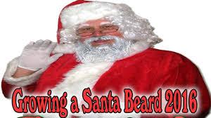 santa beard growing a santa beard 2016