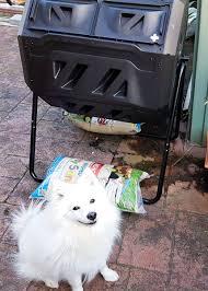 american eskimo dog giving birth compost revolution compostrevoln twitter