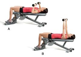 Weight Bench Leg Exercises 6 Weight Bench Exercises Guaranteed To Tone Your Upper Body Efm