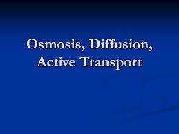 osmosis diffusion active transport