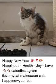 Happy New Year Cat Meme - happy new year happiness health joy love