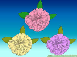 How To Make A Wrist Corsage How To Make A Carnation Corsage With Pictures Wikihow