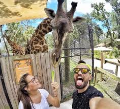 Orlando Zoo And Botanical Gardens 20 Underrated Central Florida Destinations That Aren T Theme Parks