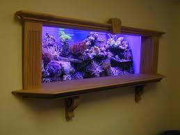 best 25 wall aquarium ideas on fish tank wall fish