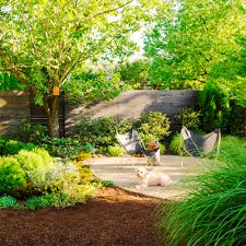 backyard landscaping ideas dogs on a new home rule tikspor picture