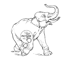 elephant running animals coloring pages for kids printable free