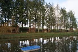Cabane En Montagne Location Cabane En Bois N G11341 à Voussac Gîtes De France Allier