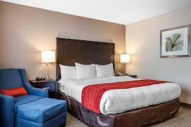 Comfort Inn San Diego Zoo Comfort Inn U0026 Suites Zoo Seaworld Area Updated 2017 Prices