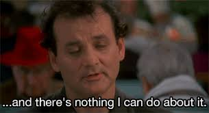 Bill Murray Groundhog Day Meme - i ve posted this everyday for the last 7842 groundhog days haven