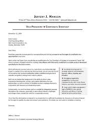 sample cover letter for vp corporate strategy executive resume