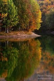 autumn colors null autumn pinterest autumn colours and autumn