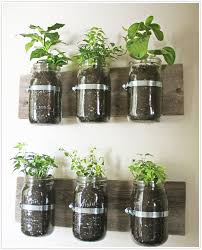 Ideas For Herb Garden Transformed Hanging Herb Garden Camille Styles