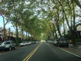 why east falls is philly u0027s best neighborhood phillyvoice