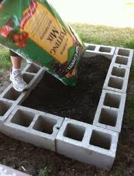 126 best gardening images on pinterest veggie gardens gardening