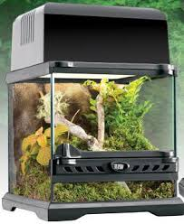 exo terra nano glass terrarium wide for sale
