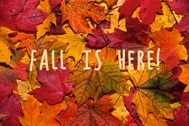 cute fall wallpapers fall is here 11 111 uploaded by im ugly trash