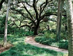 washington oaks gardens state park palm coast fl visiting