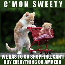 Shopping Cart Meme - cat memes i can has cheezburger