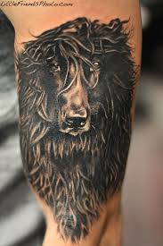 afghan hound underwater afghan hound tattoo by gary pirisi at windy city inkdogs for kids
