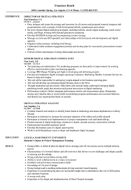sle resume for digital journalism conferences 2016 digital strategy resume sles velvet jobs