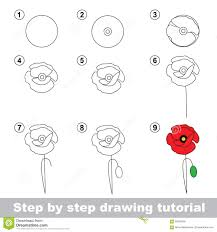drawing tutorial how to draw a poppy stock vector image 68325096