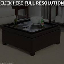 Leather Storage Ottoman With Tray Coffee Table Coffee Table Ottoman Tray Ikea His Design Reference