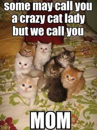 Crazy Cat Lady Memes - some may call you a crazy cat lady but we call you mom memes and
