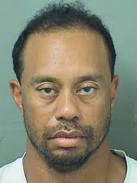 Dykstra Charged With Indecent Exposure Ny Daily News - tiger woods arrested in jupiter florida on dui suspicion
