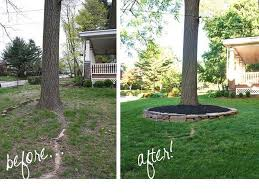 Backyard Trees Landscaping Ideas Best 25 Landscaping Around Trees Ideas On Pinterest Tree Base