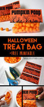 halloween treat bag pumpkin b superb