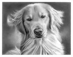 57 best pencils at work images on pinterest drawings art