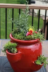 35 best garden strawberry pots images on pinterest gardening