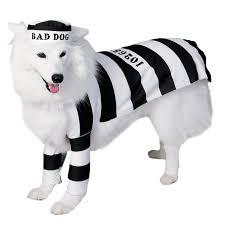 prisoner dog pet costume pet costumes dog and costumes canada