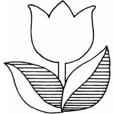 10 flower coloring pages images creative art